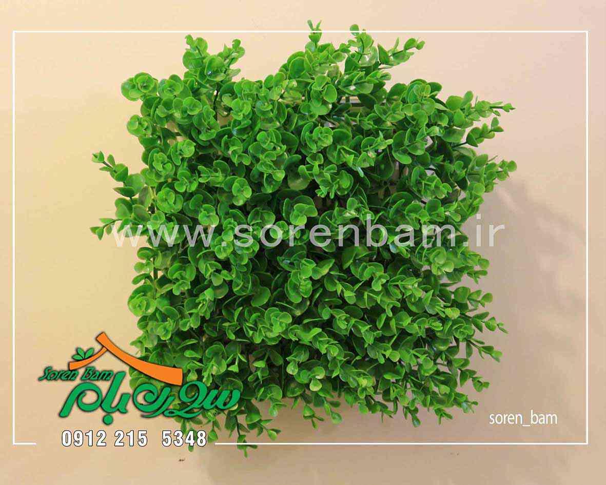 پنل دیوار سبز 25*25 دیوار سبز و انواع آنها