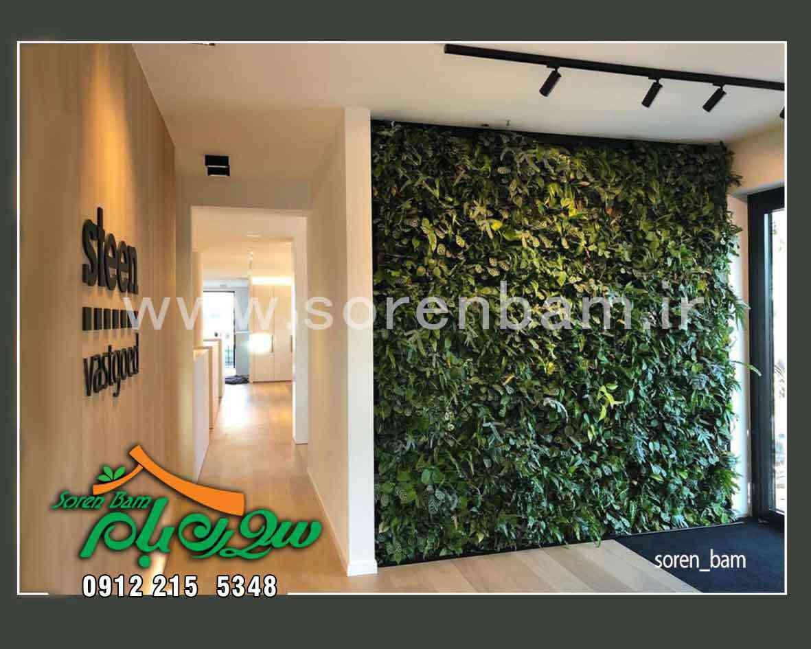 بهترین گیاهان مناسب دیوار سبز و بام سبز