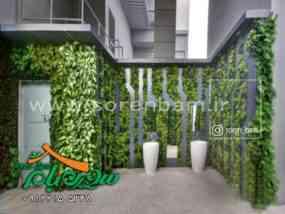 طراحی و ساخت دیوار سبز طبیعی