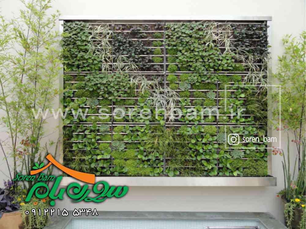 همه چیز درباره دیوار سبز ، نمای سبز