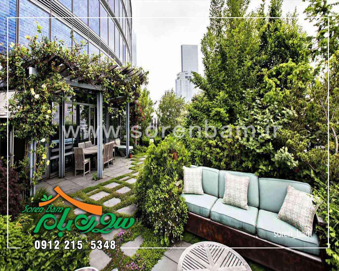 محوطه سازی با دیوار سبز طبیعی