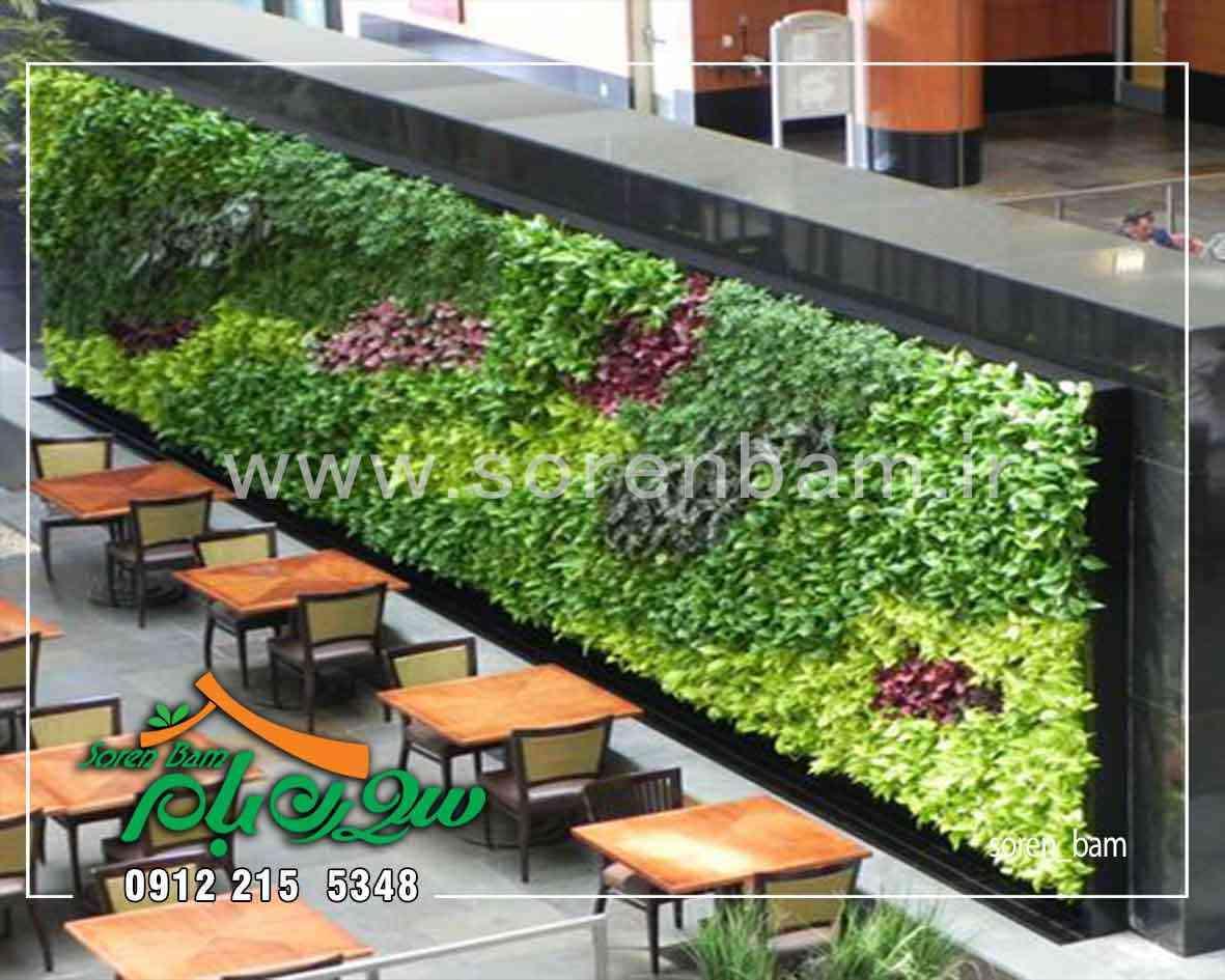اجرای دیوار سبز در رستوران