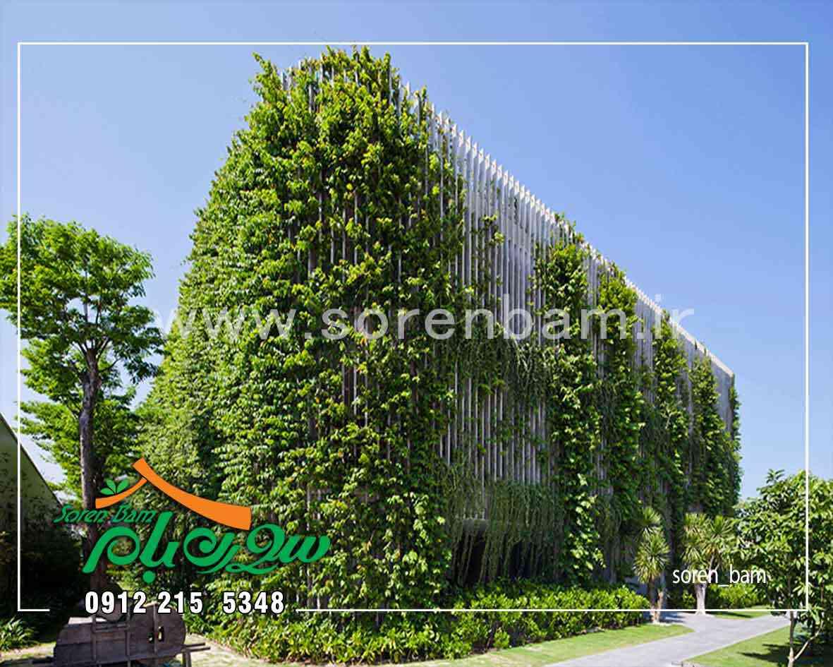 دیوار سبز طبیعی و مصنوعی چیست ؟