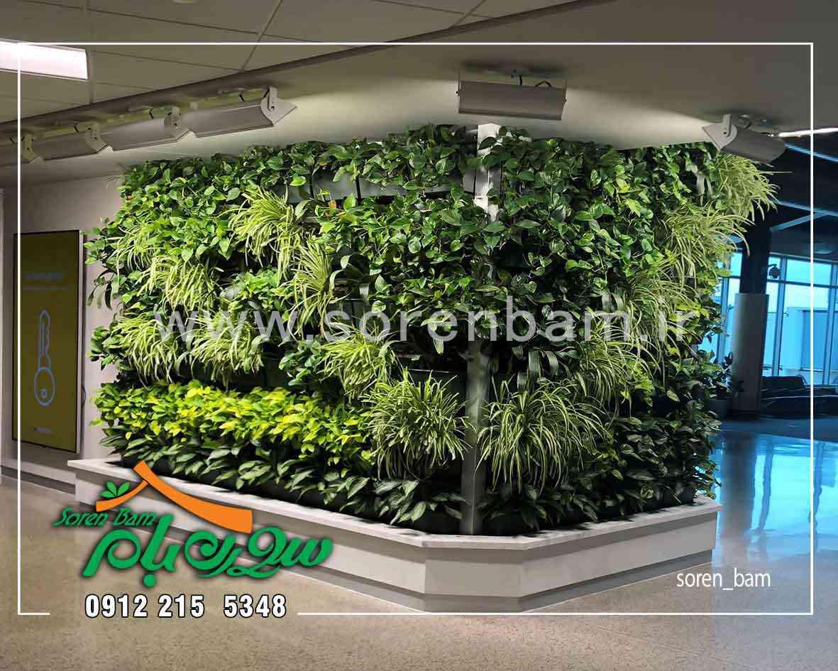 اجرای دیوار سبز در فضای داخلی ساختمان