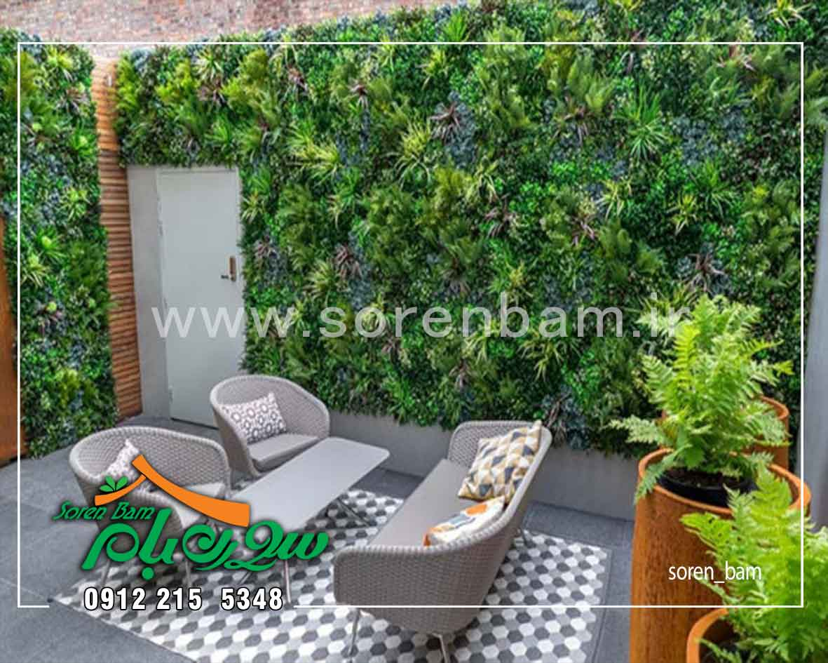 اجرای دیوار سبز در محوطه سازی حیاط