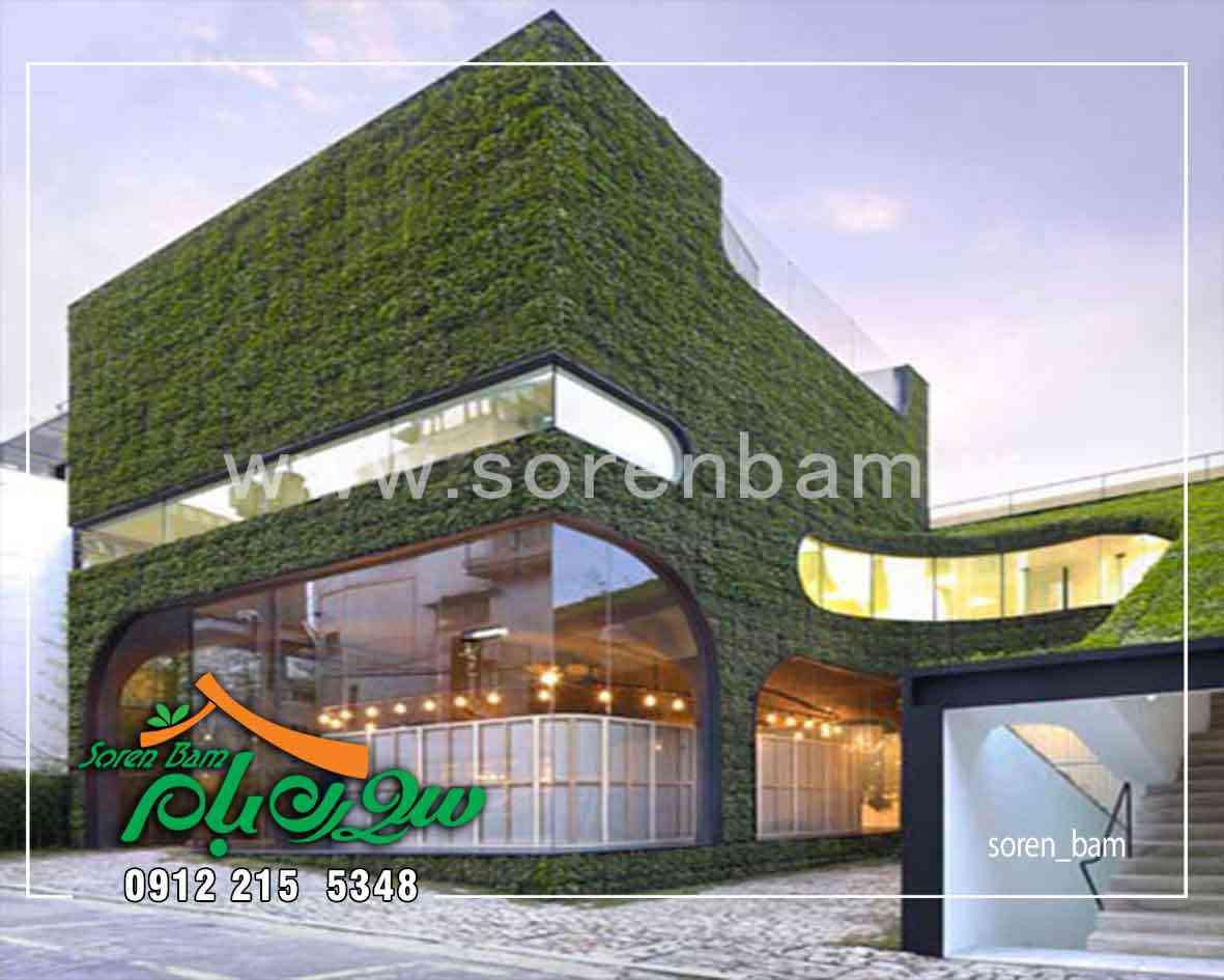 دیوار سبز هیدرو پونیک