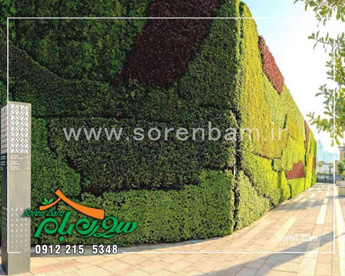 دیوار سبز طبیعی چیست؟