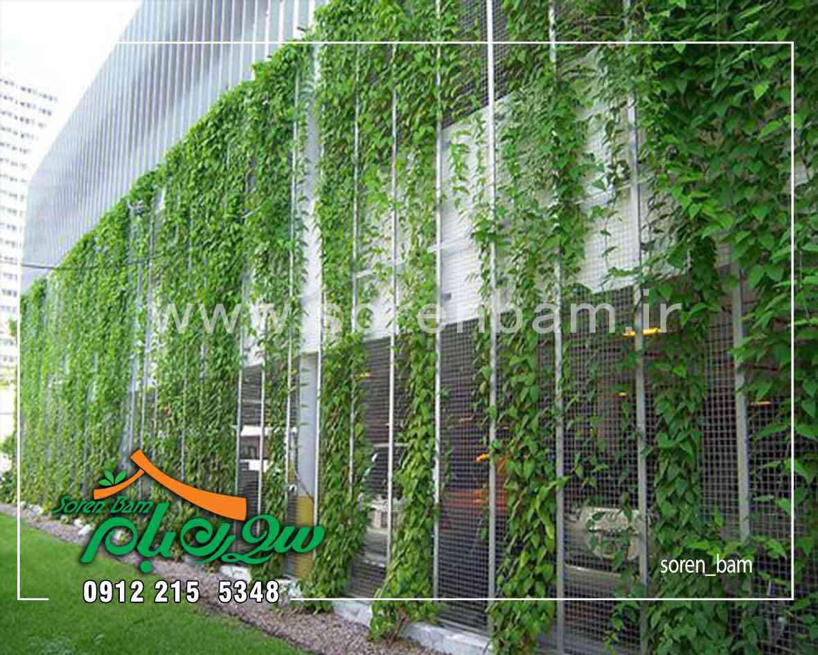 اجرای دیوار سبز کابلی بر دیوار بیرونی مجتمع مسکونی