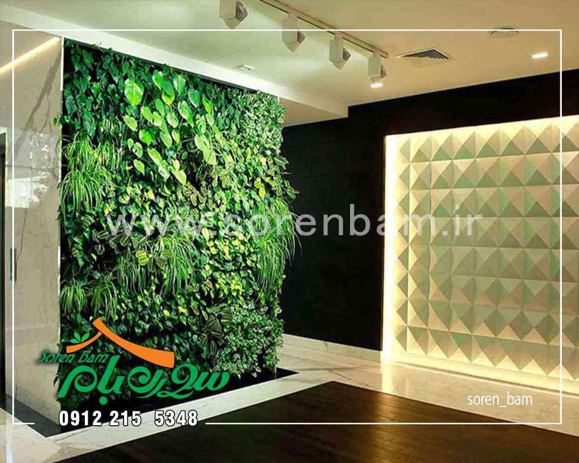 طراح و مجری دیوار سبز سورن بام