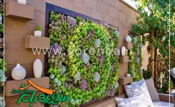 دیوار سبز طبیعی در روف گاردن