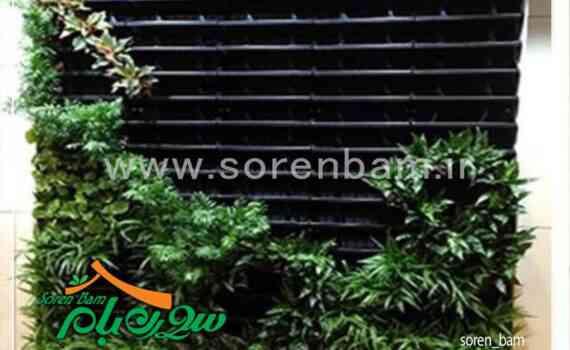 تجهیزات و فروش دیوار های سبز