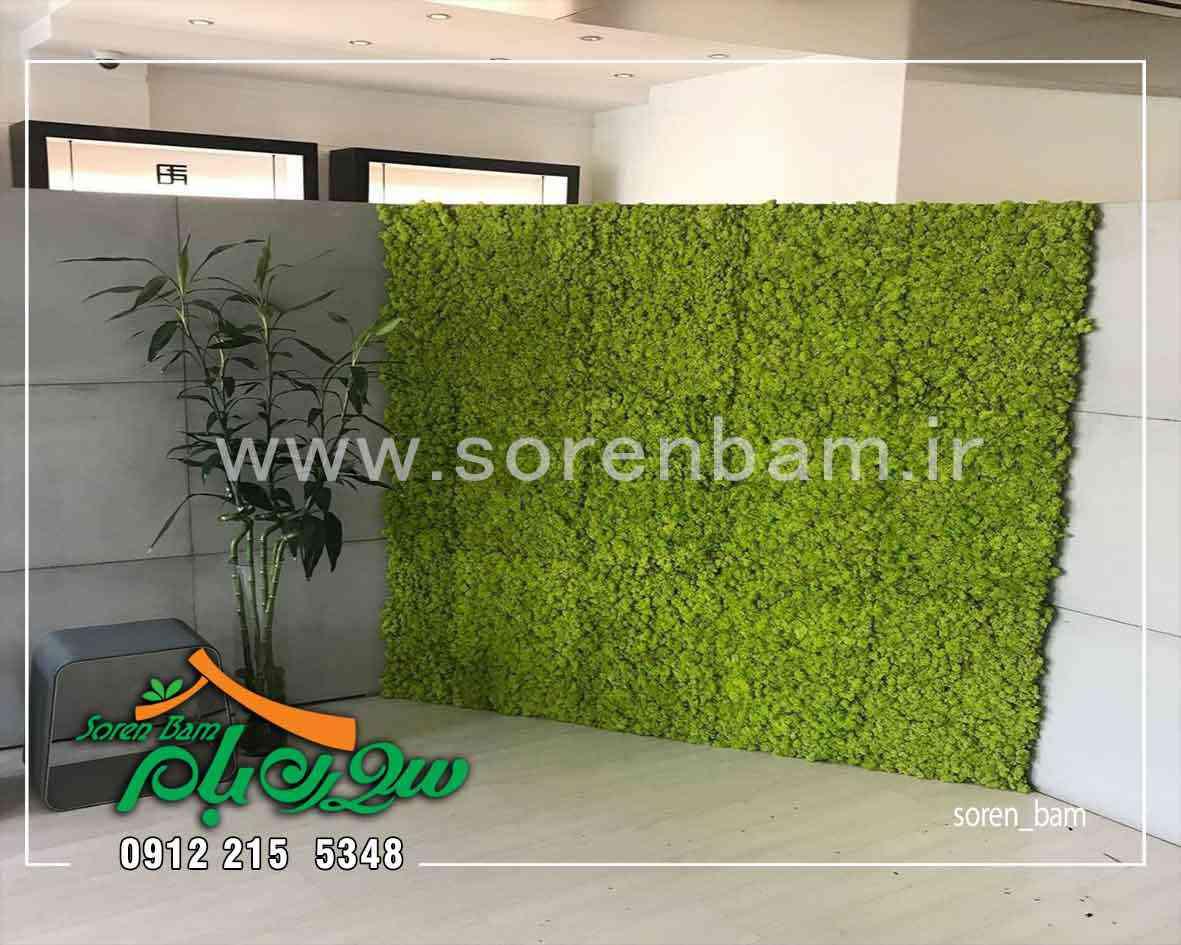 اجرای دیوار سبز قسمتی از دیوار کلینیک زیبایی