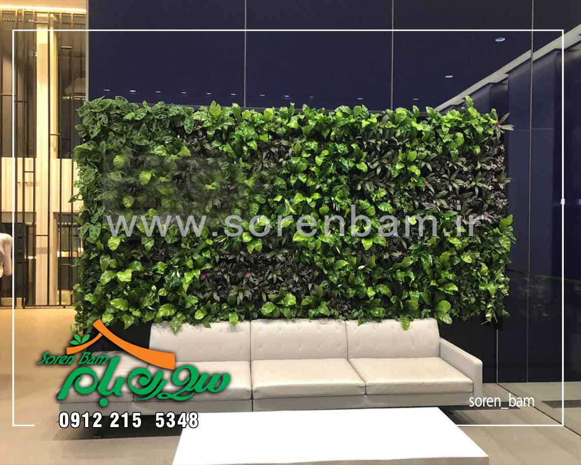 نحوه اجرای دیوار سبز طبیعی و مصنوعی