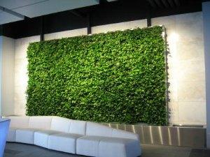 دیوار سبز زنده